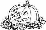 Pumpkin Coloring Drawing Printable Benefits sketch template