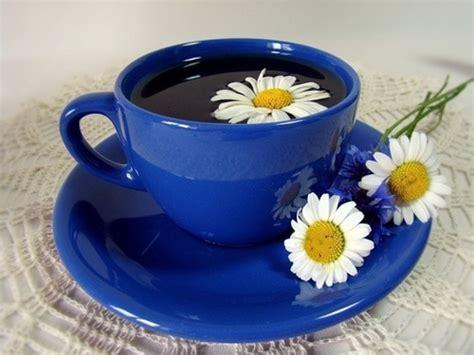 Tea, Cup, Daisy, Flower, Blue Turkish Coffee Maker Amazon Dubai Buy Pot Australia San Francisco Bay Gourmet Medium In Ebay Siphon Electric Capacity Left Handed