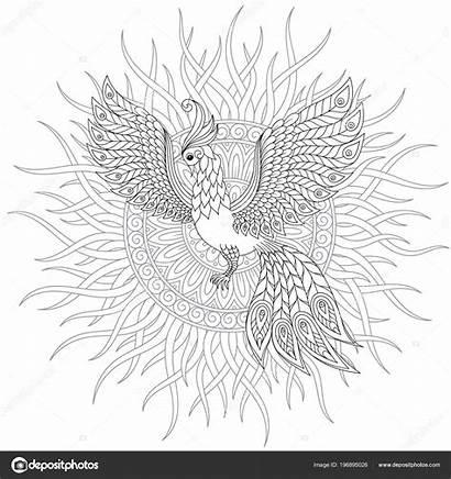 Bird Exotic Coloring Flowers Illustration Fantastic Firebird