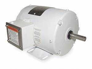 Dayton 3 Phase  Washdown Duty Motor