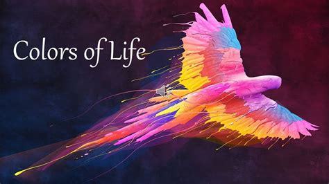 colors  life quotes youtube