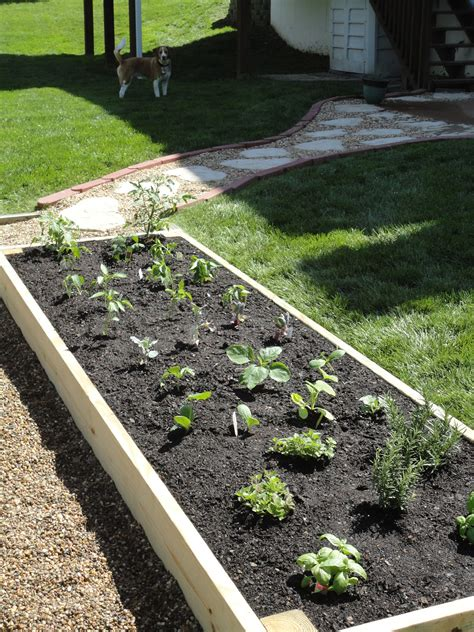 diy raised bed vanilla bean diy raised garden bed