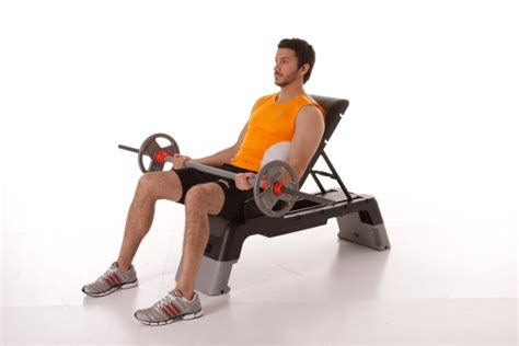 Seated Incline Barbell Curl