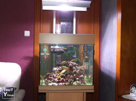 aquarium eau de mer occasion a vendre