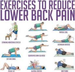 Pelvic Floor Spasms Medication by Lower Back Stretches Gallery