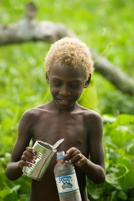 Australian Aborigines Hair by Aborigines And Melanesians Naturally Hair And