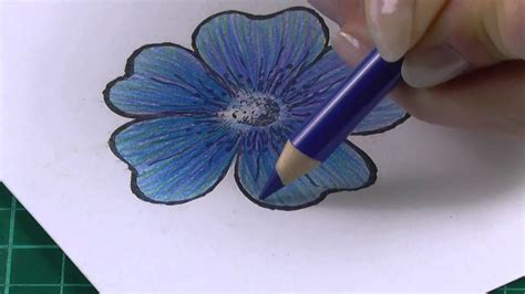 Coloring Flowers With Colored Pencils by Colouring Technique With Coloured Pencils Flowers