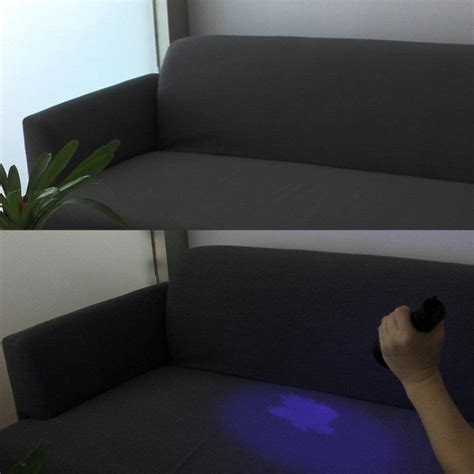 solution  remove pee urine   couch