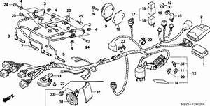 Honda Cb600f4 2004 Wire Harness  Cb600f3  4  5  6  Supplied