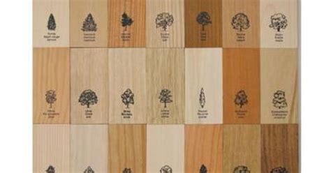 wood grain comparison top 28 wood grain comparison wood comparison images explore wine cellar wood grain