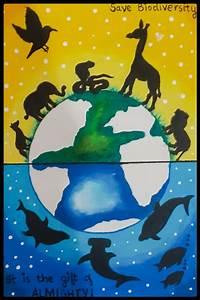 biodiversity poster biodiversity poster