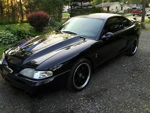 Built 95 svt cobra low orig miles | Mustang, Building
