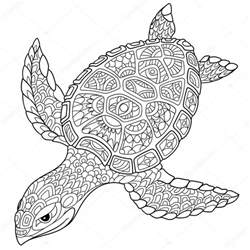 Zentangle Turtle Coloring Pages Adult Animals