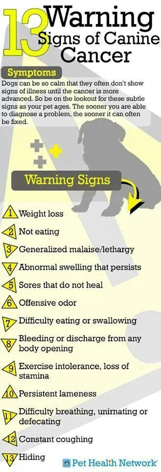 Warning Signs Of Cancer  Driverlayer Search Engine. Provident Mutual Life Insurance Company Of Philadelphia. Cost Of Laser Eye Surgery Plumber Palmdale Ca. Medical Billing & Coding Very Cheap Insurance. Home Alarm Systems Nashville Tn. Senior Care San Jose Ca Uverse Internet Plans. Physical Therapy Educational Requirements. How Many Meals A Day To Lose Weight. How Do I Start A Roth Ira Quality Email Lists