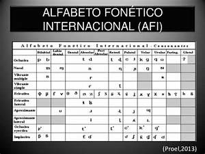 Importancia de la fonetica y la fonologia en ingles