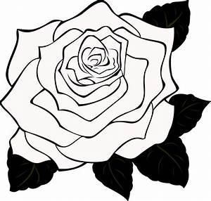 Black And White Rose Border Clip Art   Clipart Panda ...