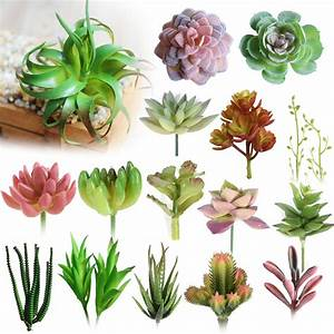 Online Buy Wholesale artificial succulent plants from