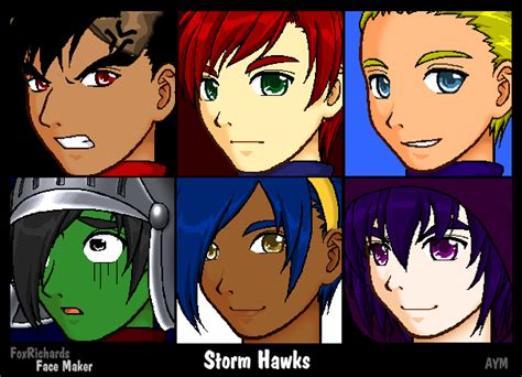 Storm Hawks By Batmantle On Deviantart