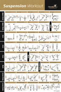 Total Body Exercise Chart Awesome Suspension Exercise Poster For Trx Workouts I 39 Ve