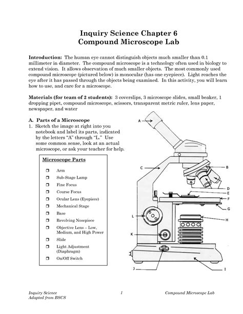 12 Best Images Of Microscope Lab Worksheet  Compound Microscope Lab Activity, Compound