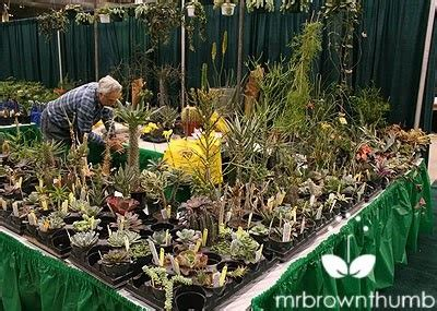 Garden Marketplace Chicago Flower Show Mrbrownthumb