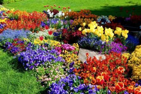 big beds flower garden on 2 hd wallpapers