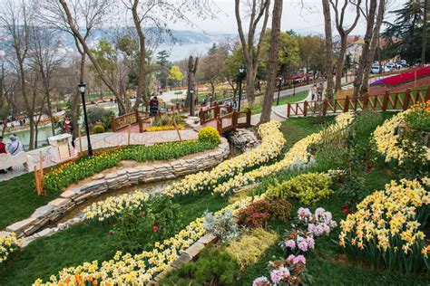istanbul tulip festival in emirgan istanbul turkey april 11 2017 world famous tulip festival in emirgan park istanbul turkey