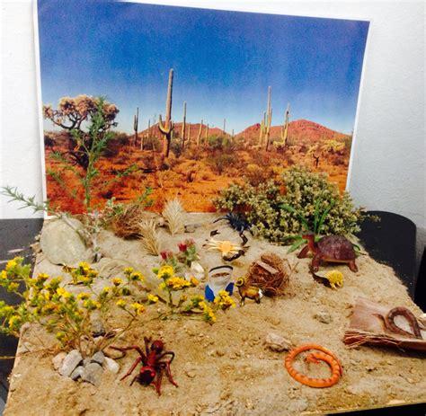 como elaborar un ecosistema reciclable maqueta desierto escuela desiertos