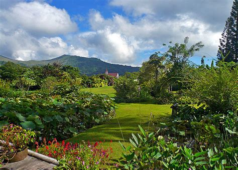 gardenia garden photo gallery page
