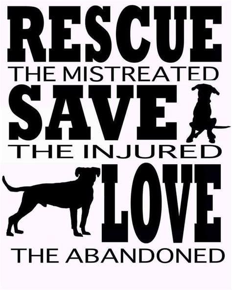 good dog rescue quotes