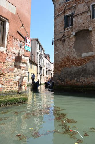 Dirty Canals In Venice Free Backgrounds