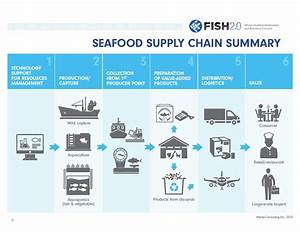 Supply Chains Are Key To Change For Sustainable Fisheries