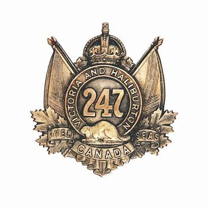 Cef Battalion Badge Badges 247th Copper Cap