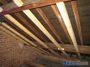 Laine De Verre Sans Pare Vapeur : isolation toit en pente choix du pare vapeur ~ Premium-room.com Idées de Décoration