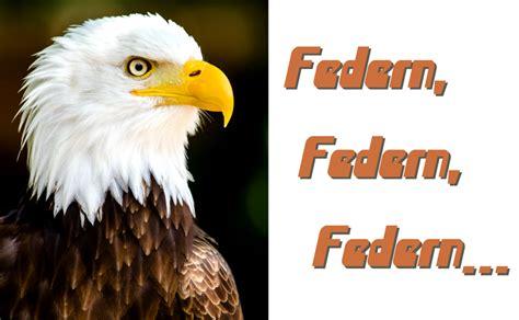 Le Aus Federn by Federn Www Colt1911 De