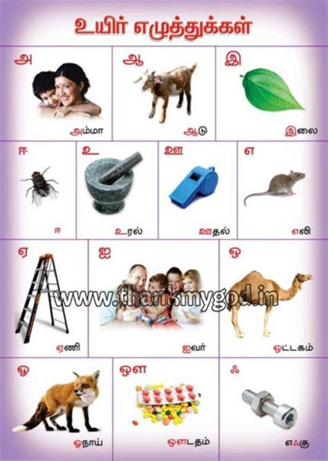tamil alphabets chart manufacturer  madurai tamil nadu