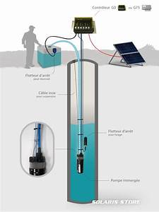 Pompe Immergée Arrosage : kit solaire de pompage immerg shurflo 70 m pompe ~ Edinachiropracticcenter.com Idées de Décoration