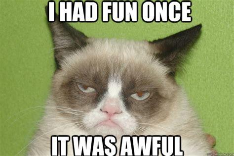 Grumpy Cat Meme I Had Fun Once - had fun once it was awful