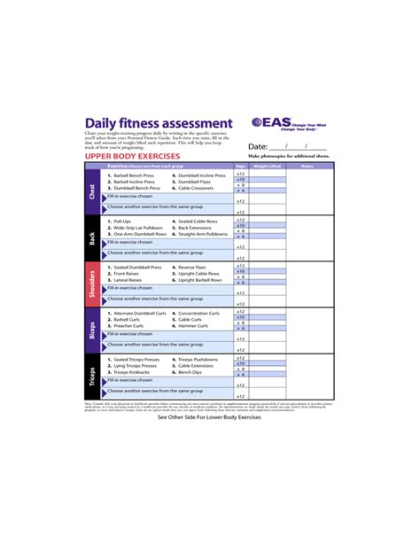 exercise chart   templates   word excel