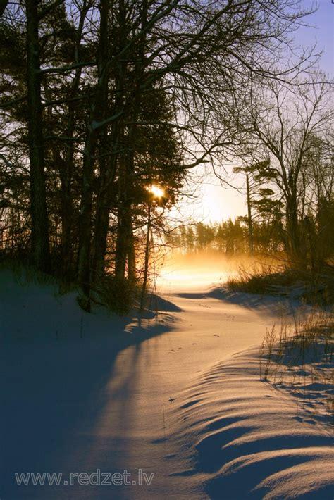 Ziemas rīts - Ziema - redzet.eu