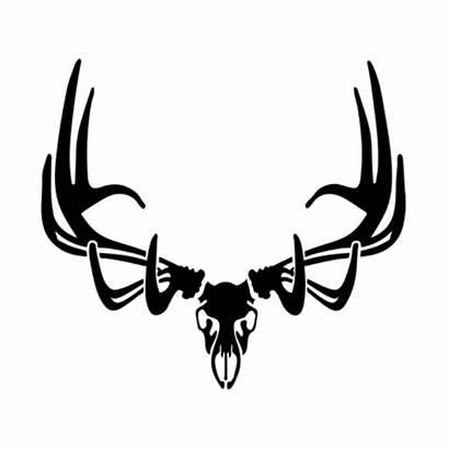 Elk Skull Clipart Decal Deer Decals Skulls