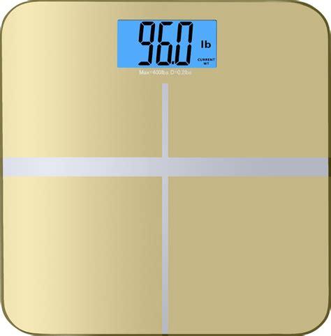 balance  high accuracy memory track premium digital scale   reg