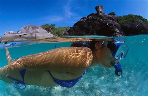 Diving in Similan Islands, Thailand   Dive The World Vacations