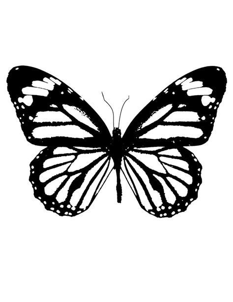 butterfly stencil butterfly stencil butterfly drawing