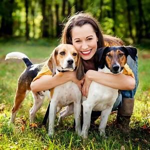 Pet sitter insurance dog walker insurance pet taxi for Babysitter dog sitter