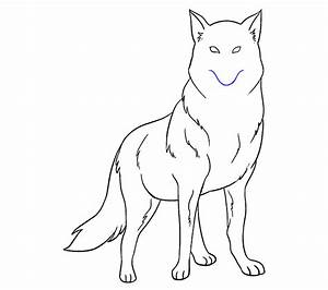 How to Draw a Wolf | Easy Step-by-Step Drawing Guides