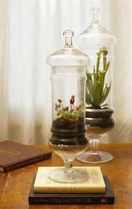 Bonsai Im Glas : deko ideen 20 ideen glasbeh lter als dekoration basteln glasbeh lter glas und dekoration ~ Eleganceandgraceweddings.com Haus und Dekorationen