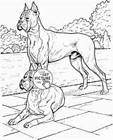 Boxer Coloring Pages Dog Dogs Printable Realistic Printables Wuppsy Getcolorings Pets Colors Animal sketch template