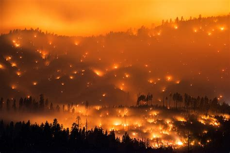 Southern Images Bensozia Stuart Palley California Wildfires