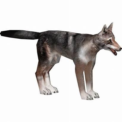 Wolf Arabian Artifex Wikia Pixels Wiki